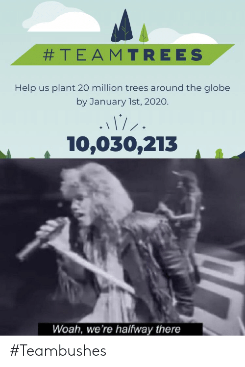 Globe:  #TEAMTREES  Help us plant 20 million trees around the globe  by January 1st, 2020.  10,030,213  Woah, we're halfway there #Teambushes