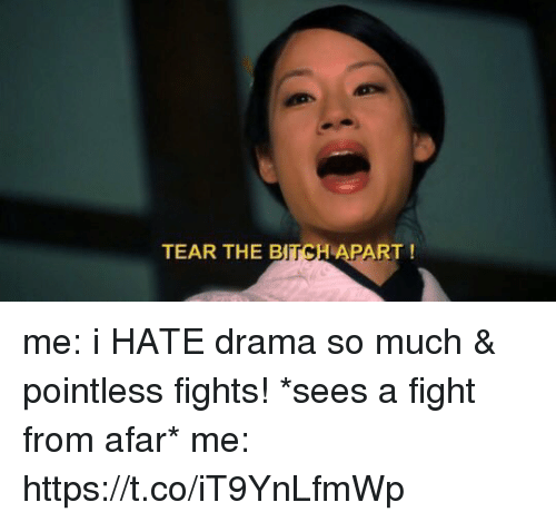 Girl Memes, Fight, and Drama: TEAR THE B  TCH  APART! me: i HATE drama so much & pointless fights!  *sees a fight from afar*  me: https://t.co/iT9YnLfmWp