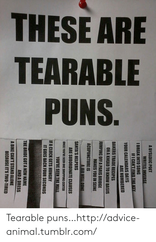 puns: Tearable puns…http://advice-animal.tumblr.com/