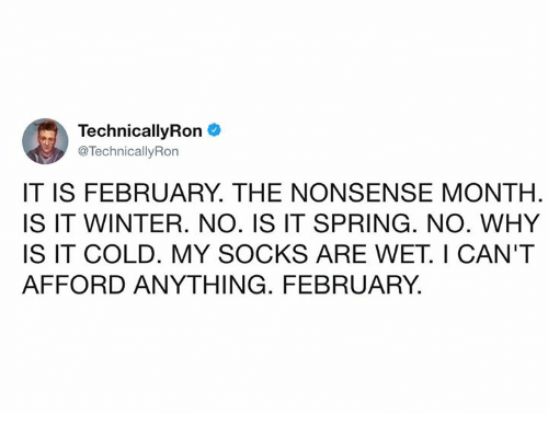 Dank, Winter, and Spring: Technical!yRon  @TechnicallyRon  IT IS FEBRUARY. THE NONSENSE MONTH  IS IT WINTER. NO. IS IT SPRING. NO. WHY  IS IT COLD. MY SOCKS ARE WET. I CAN'T  AFFORD ANYTHING. FEBRUARY.