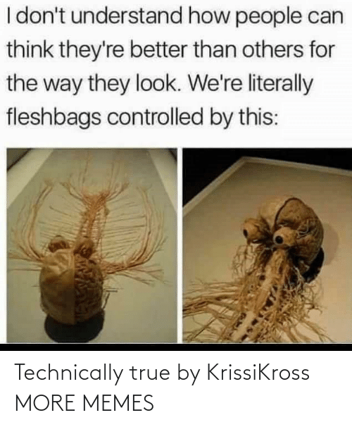 technically: Technically true by KrissiKross MORE MEMES
