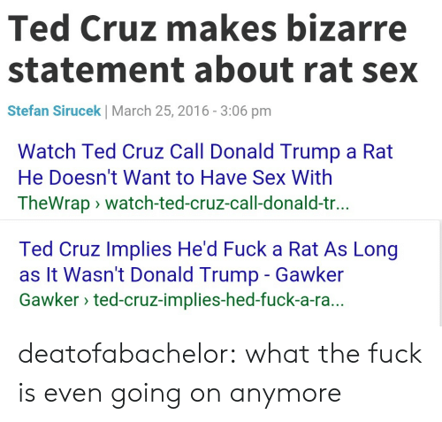 Trump: Ted Cruz makes bizarre  statement about rat sex  Stefan Sirucek | March 25, 2016-3:06 pm   Watch Ted Cruz Call Donald Trump a Rat  He Doesn't Want to Have Sex With  TheWrapwatch-ted-cruz-call-donald-tr.   Ted Cruz Implies He'd Fuck a Rat As Long  as It Wasn't Donald Trump - Gawker  Gawker ted-cruz-implies-hed-fuck-a-ra deatofabachelor:  what the fuck is even going on anymore