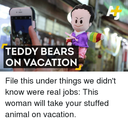 Memes, Bear, and Bears: TEDDY BEARS  ON VACATION File this under things we didn't know were real jobs: This woman will take your stuffed animal on vacation.