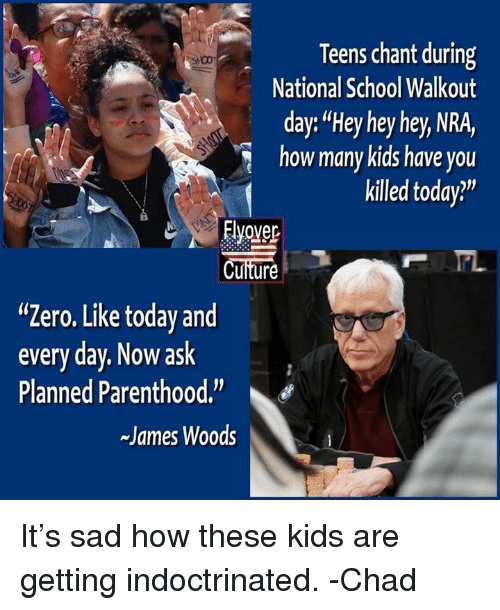 "Memes, School, and Zero: Teens chant during  National School Walkout  day: ""Hey hey hey, NRA,  ow many kids have you  killed today?""  Elover  Cuiture  ""Zero. Like today and  every day. Now ask  Planned Parenthood.""  James Woods It's sad how these kids are getting indoctrinated.  -Chad"