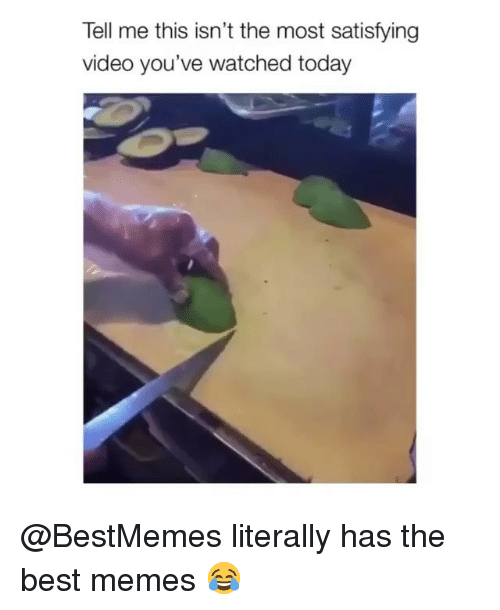 Memes, Best, and Today: Tell me this isn't the most satisfying  video you've watched today @BestMemes literally has the best memes 😂