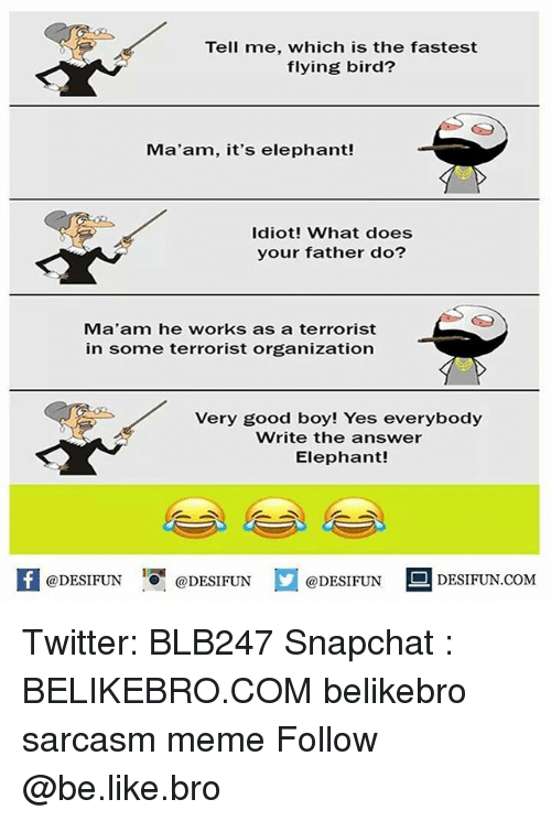 Be Like, Meme, and Memes: Tell me, which is the fastest  flying bird?  Ma'am, it's elephant!  Idiot! What does  your father do?  Ma'am he works as a terrorist  in some terrorist organization  Very good boy! Yes everybody  Write the answer  Elephant!  @DESIFUNDEIFUN  DESIFUN.COMM Twitter: BLB247 Snapchat : BELIKEBRO.COM belikebro sarcasm meme Follow @be.like.bro