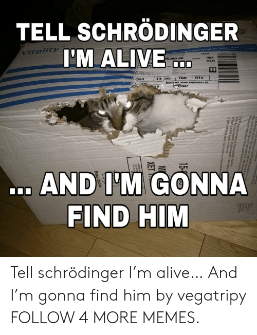 wwf: TELL SCHRÖDINGER  VItality  I'M ALIVE  Versatiie Paper Good for Most Jobs  DOCK  oo0007  26309-00  002  BLK  shaun (Uo  HOo 7000  Q53  108  015  02  14  XEROX MULT PURP 4200 PAPER LTR  1 CT1O PK  R2047  PZ  15  1986Panda symbol WWE-Wod W  .AND I'M GONNA  FIND HIM  Canpdn  licersee for eta Poe  Bus droits téservés. XEROX  rox Corporation oux Et  Qes  XEROX d  ut isées sous licence de Xerox Coror De u dso  t pt 1 doutre  orts pour medias spécialisés de Xera oux Etetsl  deposées de Xe  OwwERealstered Tredemart Panda Symbol1986 WWF.  und for Nature (alsok  OWWR is a WWF Rgistered Trademart  01986 WNF-Fonds tondial pour la nature symbole du panda. Marque d  M  XET Tell schrödinger I'm alive… And I'm gonna find him by vegatripy FOLLOW 4 MORE MEMES.