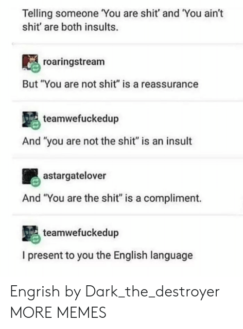 """reassurance: Telling someone You are shit' and You ain't  shit' are both insults.  roaringstream  But """"You are not shit"""" is a reassurance  teamwefuckedup  And """"you are not the shit"""" is an insult  astargatelover  And """"You are the shit"""" is a compliment.  teamwefuckedup  I present to you the English language Engrish by Dark_the_destroyer MORE MEMES"""