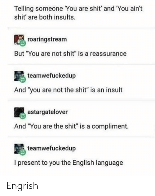 """reassurance: Telling someone You are shit' and You ain't  shit' are both insults.  roaringstream  But """"You are not shit"""" is a reassurance  teamwefuckedup  And """"you are not the shit"""" is an insult  astargatelover  And """"You are the shit"""" is a compliment.  teamwefuckedup  I present to you the English language Engrish"""