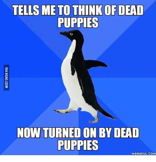 Try Not To Get Turned On: TELLS ME TO THINK OF DEAD  PUPPIES  NOW TURNED ON BY DEAD  PUPPIES  MEMEFUL.COM