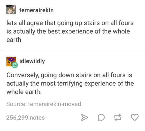 Best, Earth, and Humans of Tumblr: temerairekin  lets all agree that going up stairs on all fours  is actually the best experience of the whole  earth  idlewildly  Conversely, going down stairs on all fours is  actually the most terrifying experience of the  whole earth.  Source: temerairekin-moved  256,299 notes