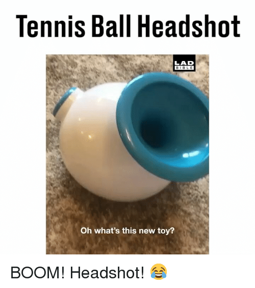 new toy: Tennis Ball Headshot  LAD  BIBLE  Oh what's this new toy? BOOM! Headshot! 😂