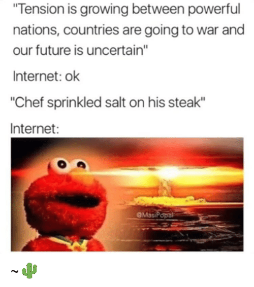 "Sprinkle Salt: Tension is growing between powerful  nations, countries are going to war and  our future is uncertain""  Internet: ok  ""Chef sprinkled salt on his steak""  Internet  aMas Papal ~🌵"