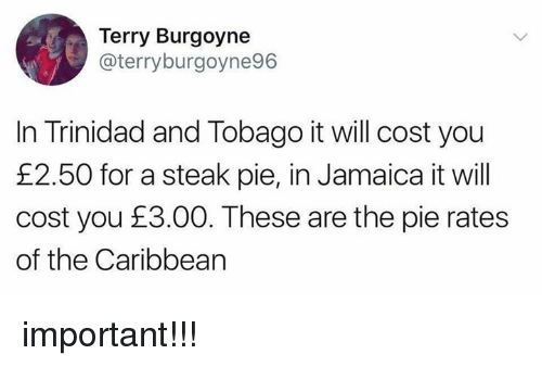 Importanter: Terry Burgoyne  @terryburgoyne96  In Trinidad and Tobago it will cost you  £2.50 for a steak pie, in Jamaica it will  cost you £3.00. These are the pie rates  of the Caribbearn important!!!