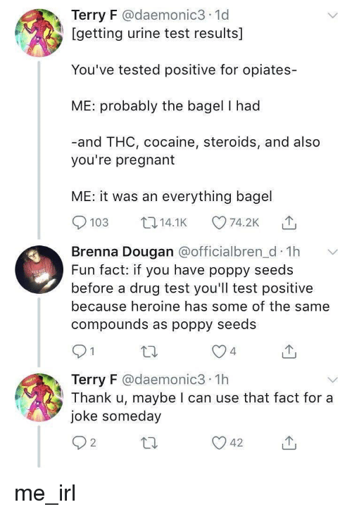 heroine: Terry F @daemonic3 1d  [getting urine test results]  You've tested positive for opiates-  ME: probably the bagel I had  -and THC, cocaine, steroids, and also  you're pregnant  ME: it was an everything bagel  103 14.1K 74.2K  Brenna Dougan aofficialbren d Th  Fun fact: if you have poppy seeds  before a drug test you'll test positive  because heroine has some of the same  compounds as poppy seedS  4  Terry F @daemonic3 1h  Thank u, maybe I can use that fact for a  joke someday  2 me_irl