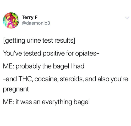 Pregnant, Cocaine, and Test: Terry F  @daemonic3  [getting urine test results]  You've tested positive for opiates-  ME: probably the bagel I had  -and THC, cocaine, steroids, and also you're  pregnant  ME: it was an everything bagel