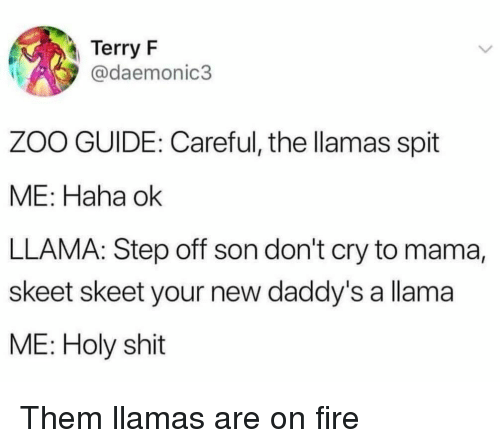 skeet: Terry F  @daemonic3  ZOO GUIDE: Careful, the llamas spit  ME: Haha ok  LLAMA: Step off son don't cry to mama,  skeet skeet your new daddy's a llama  ME: Holy shit Them llamas are on fire