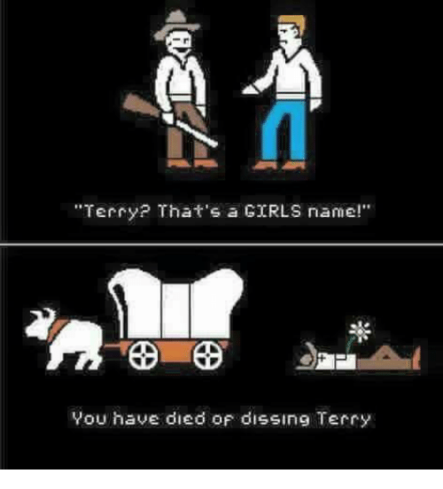 """Dissing: """"Terry? That's a GIRLS name!""""  You have died oF dissing Terry"""