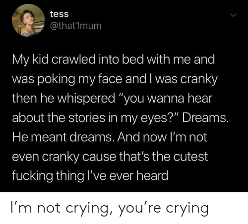 """tess: tess  @that1mum  My kid crawled into bed with me and  was poking my face and I was cranky  then he whispered """"you wanna hear  about the stories in my eyes?"""" Dreams.  He meant dreams. And now l'm not  even cranky cause that's the cutest  fucking thing l've ever heard I'm not crying, you're crying"""