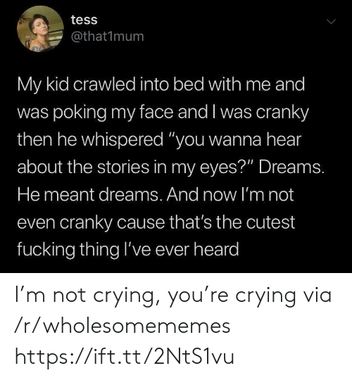 """tess: tess  @that1mum  My kid crawled into bed with me and  was poking my face and I was cranky  then he whispered """"you wanna hear  about the stories in my eyes?"""" Dreams.  He meant dreams. And now l'm not  even cranky cause that's the cutest  fucking thing l've ever heard I'm not crying, you're crying via /r/wholesomememes https://ift.tt/2NtS1vu"""