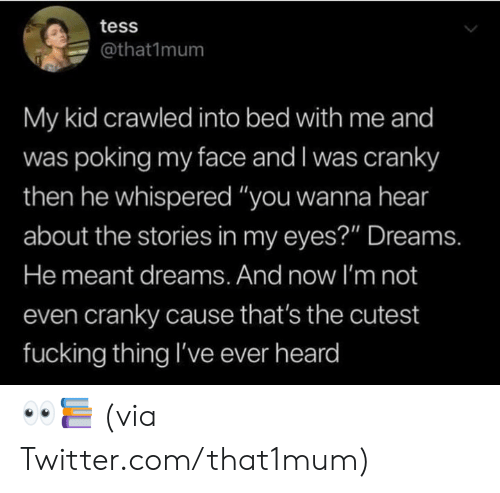 """tess: tess  @that1mum  My kid crawled into bed with me and  was poking my face and I was cranky  then he whispered """"you wanna hear  about the stories in my eyes?"""" Dreams.  He meant dreams. And now I'm not  even cranky cause that's the cutest  fucking thing I've ever heard 👀📚  (via Twitter.com/that1mum)"""