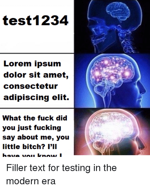 filler: test1234  Lorem ipsum  dolor sit amet,  consectetur  adipiscing elit.  What the fuck did  you just fucking  say about me, you  little bitch? l'1I Filler text for testing in the modern era