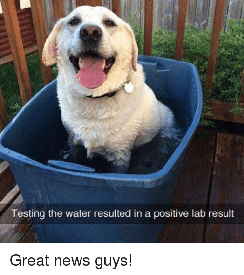 Memes, News, and Water: Testing the water resulted in a positive lab result Great news guys!