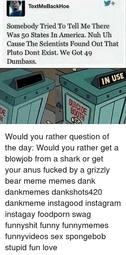 Bears Memes: TextMe BackHoe  Somebody Tried To Tell Me There  Was 50 States In America. Nuh Uh  Cause The Scientists Found Out That  Pluto Dont Exist. We Got 49  Dumbass.  IN USE Would you rather question of the day: Would you rather get a blowjob from a shark or get your anus fucked by a grizzly bear meme memes dank dankmemes dankshots420 dankmeme instagood instagram instagay foodporn swag funnyshit funny funnymemes funnyvideos sex spongebob stupid fun love
