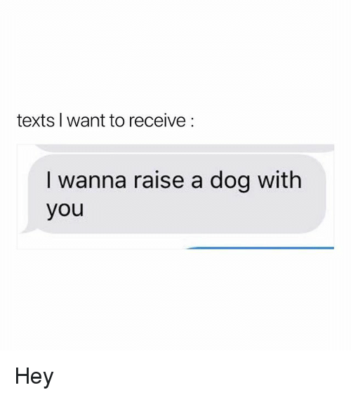 Memes, Texts, and 🤖: texts l want to receive:  I wanna raise a dog with  you Hey