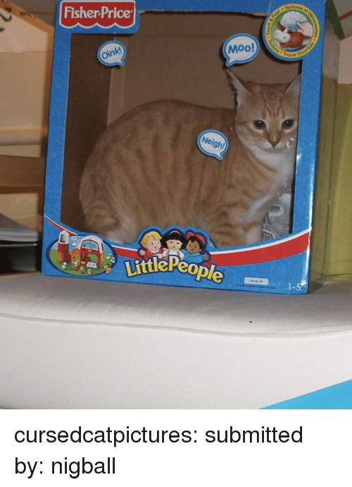 """toque: textures o  Fisher Price  Moo!  """" Toque  oink  Neigh!  ttlePeo  1-5 cursedcatpictures:  submitted by: nigball"""