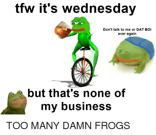 Tfw, Wednesday, and Dank Memes: tfw it's Wednesday  Don't talk to me or DAT BOI  ever again  but that's none of  my business TOO MANY DAMN FROGS