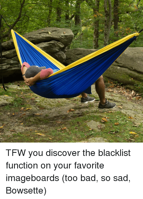the blacklist: TFW you discover the blacklist function on your favorite imageboards (too bad, so sad, Bowsette)