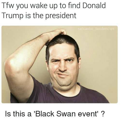 Donald Trump, Ironic, and Tfw: Tfw you wake up to find Donald  Trump is the president  sarcastic tendencies Is this a 'Black Swan event' ?