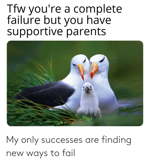 Youre A: Tfw you're a complete  failure but you have  supportive parents My only successes are finding new ways to fail