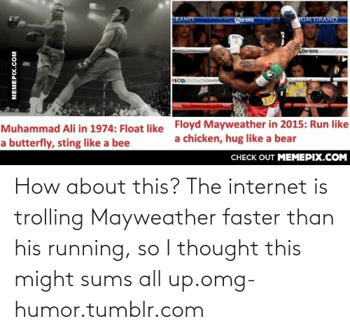 sting like a bee: TGM GRAND  GRAND  Corona  Gjorona  ICO  ona  Floyd Mayweather in 2015: Run like  a chicken, hug like a bear  Muhammad Ali in 1974: Float like  a butterfly, sting like a bee  CHECK OUT MEMEPIX.COM  MEMEPIX.COM How about this? The internet is trolling Mayweather faster than his running, so I thought this might sums all up.omg-humor.tumblr.com