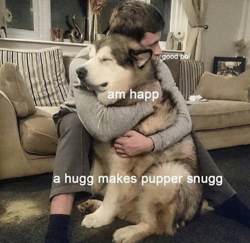 pupper: Tgood bo  am happ  a hugg makes pupper snugg