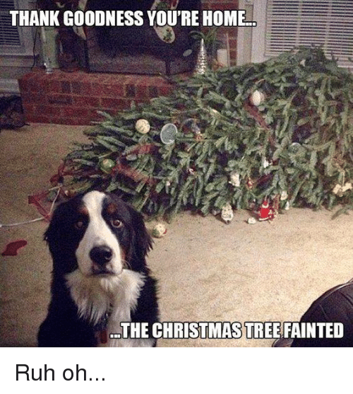 Ruh: THANK GOODNESS YOU'RE HOME  THE CHRISTMASTREEFAINTED Ruh oh...