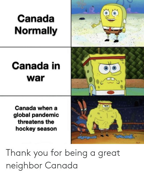 neighbor: Thank you for being a great neighbor Canada