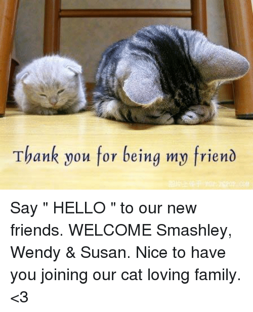https://pics.onsizzle.com/thank-you-for-being-my-friend-say-hello-6250697.png Hello New Friend