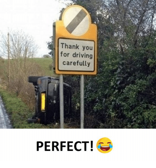 Driving, Thank You, and You: Thank you  for driving  carefully  PERFECT!