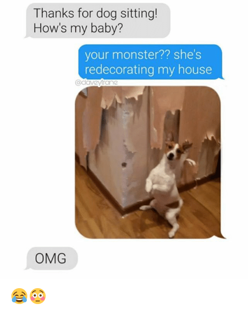 Memes, Monster, and My House: Thanks for dog sitting!  How's my baby?  your monster?? she's  redecorating my house  eyrane  OMG 😂😳
