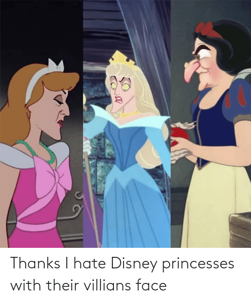 princesses: Thanks I hate Disney princesses with their villians face