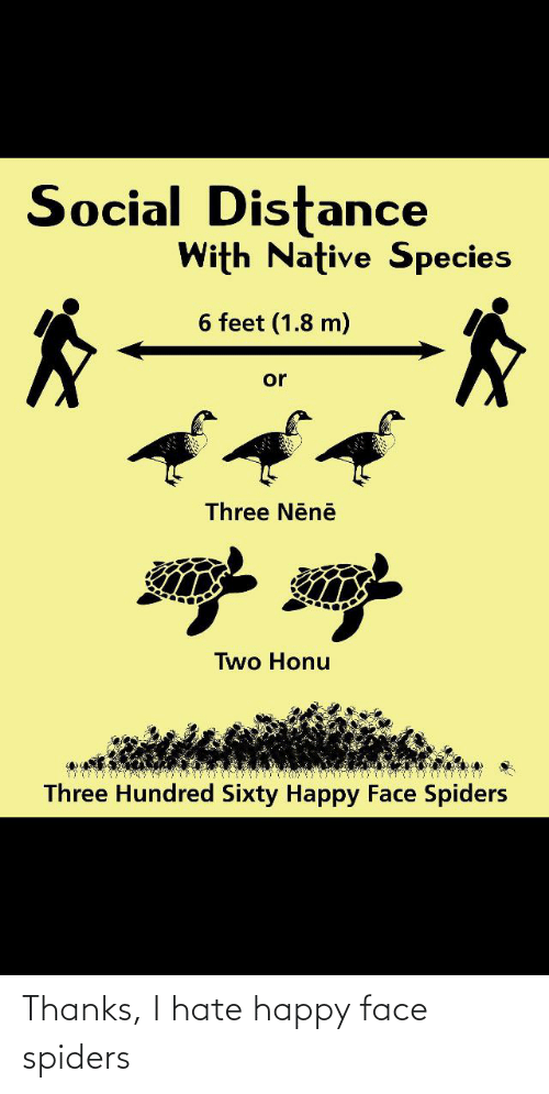 happy face: Thanks, I hate happy face spiders
