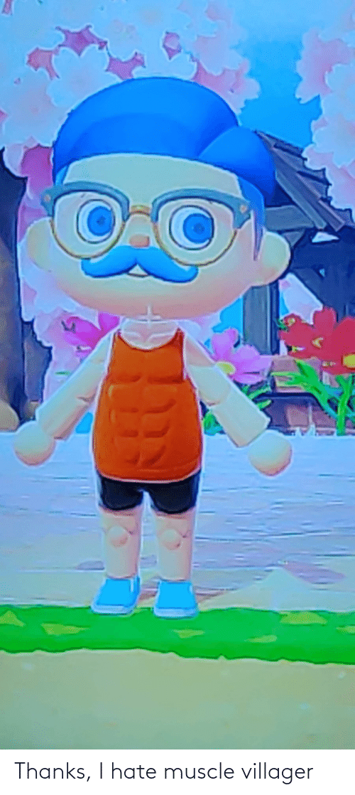 muscle: Thanks, I hate muscle villager