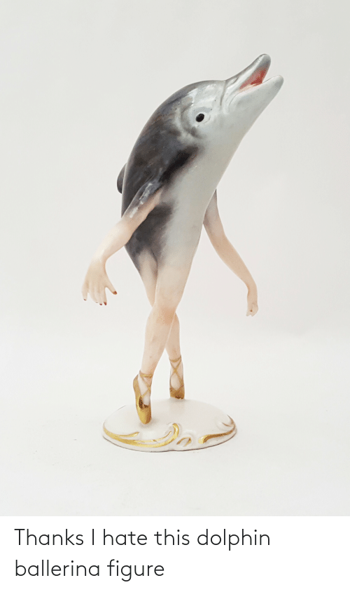 Dolphin: Thanks I hate this dolphin ballerina figure