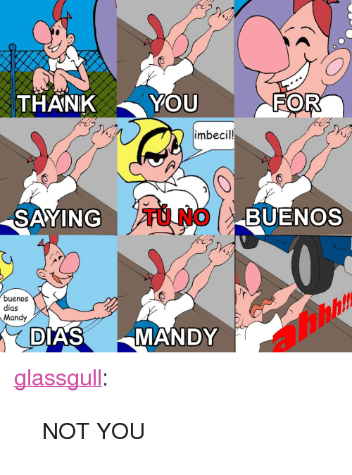 "Imbecil: THANKYOU  imbecil!  SAYING  TU NO  BUENOS  buenos  dias  Mandy  DIAS  MANDY <p><a href=""http://glassgull.tumblr.com/post/162560776013/not-you"" class=""tumblr_blog"">glassgull</a>:</p><blockquote><p>NOT YOU<br/></p></blockquote>"
