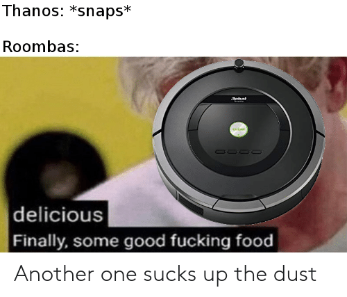 roombas: Thanos: *snaps*  Roombas:  Robot  |delicious  Finally, some good fucking food Another one sucks up the dust