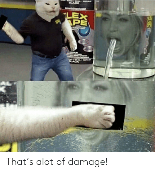 alot: That's alot of damage!