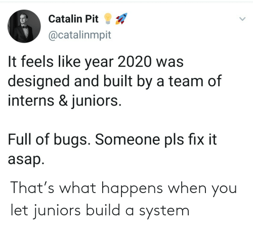 build a: That's what happens when you let juniors build a system