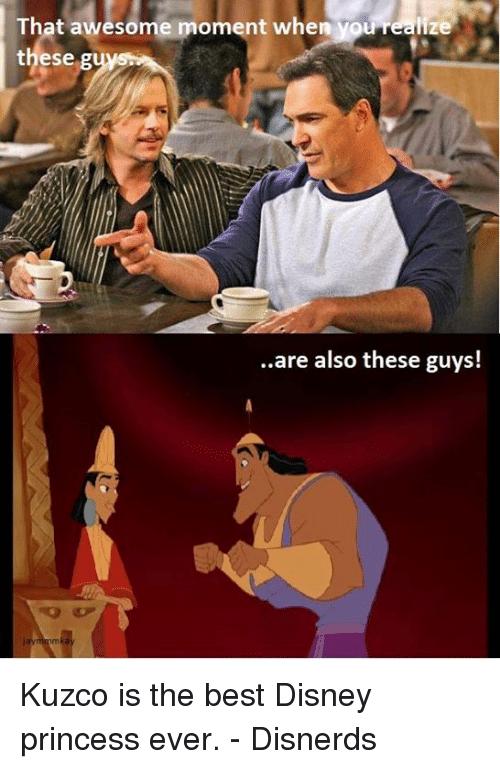 Funny, Disney Princess, and Disney Princesses: That awesome moment when you realize  these  are also these guys! Kuzco is the best Disney princess ever. - Disnerds